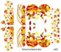 Слайдер-дизайн премиум, Осень, листья, растения ult25 - 1