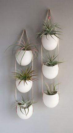 e691e9fc0fd6d86e_7992-w268-h486-b0-p0--contemporary-indoor-pots-and-planters.jpg (268×486)