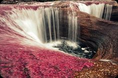 """Cano Cristales The Rainbow River- Amazing Photos Cano Cristales lies in the Serrania de La Macarena, Colombia. Often called """"the most beau. Places Around The World, Oh The Places You'll Go, Places To Travel, Places To Visit, Around The Worlds, Rainbow River, Rainbow Waterfall, What A Wonderful World, Beautiful World"""