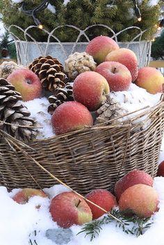 Christmas apple basket