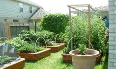 184 best Zahrada images on Pinterest in 2018 | Potager garden, Herb Designing A Vegetable Garden Pots Html on