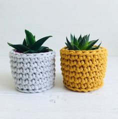 Crochet Planter Cover Pattern: Outfit Styles for Plants - Unique Balcony Garden Decoration and Easy DIY Ideas Crochet Planter Cover, Crochet Vase, Crochet Basket Pattern, Easy Crochet Patterns, Crochet Baskets, Small Potted Plants, Crochet Home Decor, Succulent Pots, Maya