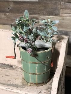 Vintage ice cream bucket available in our warehouse Mint Decor, Salvaged Decor, Vintage Ice Cream, Lambs Ear, Flea Market Finds, Rose Bowl, Antique Decor, Home Staging, Fixer Upper