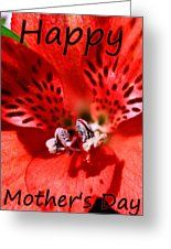 Petals Of Red Happy Mother's Day Greeting Card