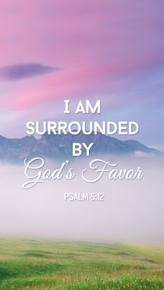 Psalm 5:12 (NASB) - For it is You who blesses the righteous man, O Lord, You surround him with favor as with a shield.