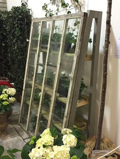Garten und Terrasse Mini greenhouse The Secret Of Ladies. Build A Greenhouse, Indoor Greenhouse, Greenhouse Gardening, Greenhouse Ideas, Homemade Greenhouse, Diy Small Greenhouse, Greenhouse Frame, Wooden Greenhouses, Green House Design