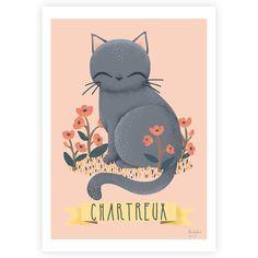 kanzilue – affiche chats de race – le chartreux