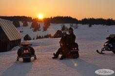 Śnieżne safari http://www.podreglami.pl/atrakcje/sniezne-safari.html