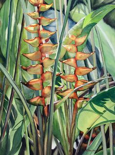 An original watercolor by Colleen Sanchez. Wildlife Paintings, Seascape Paintings, Watercolour Painting, Fine Art, Landscape, Scenery, Landscape Paintings, Corner Landscaping, Visual Arts