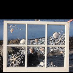 Old window with shells on glass