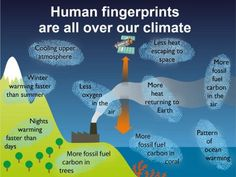 Global warming: why is IPCC report so certain about the influence of humans?  100 percent of the global warming over the past 60 years is human-caused, according to the IPCC's latest report
