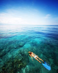 Snorkle in Cairns, Australia  Been here! But would love to go back!