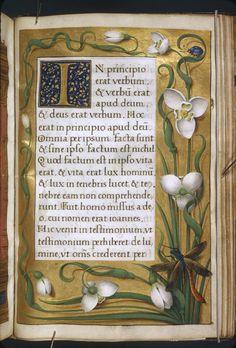 Jean Bourdichon - from Les Grandes Heures d'Anne de Bretagne, c.1503-1508.