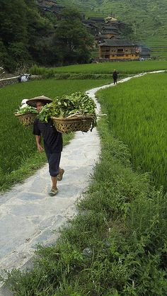 Xijiang Miao's Village . Guizhou China  | In China? try www.importedFun.com for Award Winning Kid's Science |