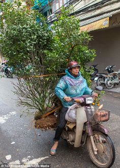 Photographer Ton Koene captured the delivery drivers as they made their daily rounds