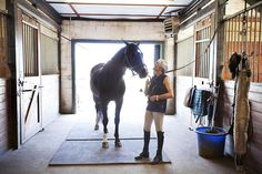 The Cost of Boarding Your Horse