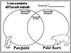 FREEBIE in the PREVIEW!  Polar Bears~Informational text & Literature writing Mini Unit for 1st-2nd grades!  It is full of fun writing templates about Polar bears!  Great for simple researching skills!!!