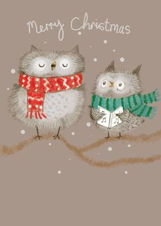 Our key principles are Fairness, Ability, Creativity, Trust and that's a F. Christmas Owls, Vintage Christmas, Christmas Stockings, Christmas Holidays, Christmas Cards, Xmas, Christmas Ornaments, Happy Owl, Owl Bird