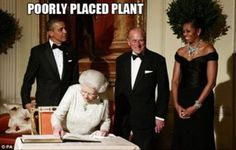 Michelle Obama - poorly placed plant! Lol!