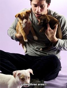 WE WERE BORN FOR THIS! — Dylan O'Brien Plays With Puppies