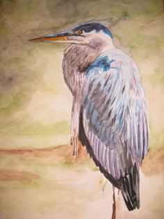 Okeechobee Blue Heron - Watercolor, Heather Torres