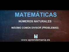 Máximo común divisor (problemas) - MATEMÁTICAS - www.aprendemania.es - YouTube