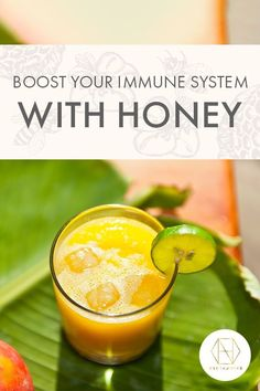 Did you know that honey is a fantastic way to keep your immune system in tip top shape? If you're looking for a natural way to keep your immune system fighting fit, antimicrobial honeys such as ours are one way to help. Check out the details on the website, and whilst you're there sign up to the newsletter for 20% off your first purchase. #luxuryhoney #jarrahhoney #redgumhoney #nectahive #antimicrobialhoney Australian Honey, Best Honey, One Hit Wonder, White Blood Cells, Antioxidant Vitamins, Did You Eat, Fresh Fruits And Vegetables, Sugar Cravings, Gut Health