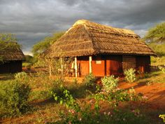 Lake Jipe Safari Camp Kenya are very warm, welcoming and friendly, helping to make your stay enjoyable to the extreme. Lake Jipe Safari Camp Africa is indeed a jewel in the safari crown of Kenya