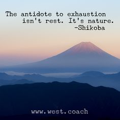INSPIRATION - EILEEN WEST LIFE COACH | The antidote to exhaustion isn't rest. It's nature - Shikoba | Life Coach, Eileen West Life Coach, inspiration, inspirational quotes, motivation, motivational quotes, quotes, daily quotes, self improvement, personal growth, live your best life, freedom, rest, nature, Shikoba, Shikoba quotes