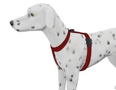 Sims 4 CC finds — chippedcupanddustybooks: Dog Harness update I. The Sims, Sims Cc, Sims 4 Pets, Sims 2 Hair, Sims Four, Sims 4 Cc Packs, Dog Furniture, Pet Clothes, Dog Clothing