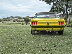 Mustang, Alte, Auto, Muskel