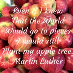 Even if I knew that the world would go to pieces I would still plant my apple tree. Apple Quotes, Fruit Quotes, Pretty Pictures, Pretty Pics, Create Quotes, Irish Quotes, Apple Fruit, Apple Tree, Customized Gifts