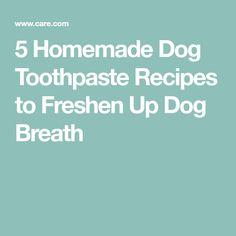 5 Homemade Dog Toothpaste Recipes to Freshen Up Dog Breath
