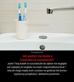 Jeżeli Twój kubek na szczoteczki do zębów nie wygląda już najlepiej ze względu na osad i nagromadzony brud – wlej ...