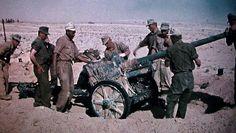 DAK Pak 40 northafrika.