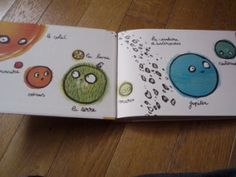 Une page lue chaque soir... au minimum: Petit Malabar raconte la lune, la terre et le soleil