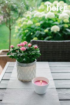 Den eigenen Garten zur Wohlfühloase machen ist das Ziel von vielen. Die Tischdeko am Outdoortisch muss natürlich perfekt zusammenpassen. Table Decorations, Plants, Outdoor, Home Decor, Goal, Candles, Outdoors, Decoration Home, Room Decor