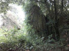 Campo do Curro.