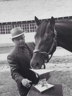 1958 Kentucky Derby and Preakness Stakes winner Tim Tam. Tim Tam was one of my… Preakness Winner, Preakness Stakes, Kentucky Horse Farms, Kentucky Derby, Horse Galloping, Thoroughbred Horse, Derby Winners, Tim Tam, Sport Of Kings