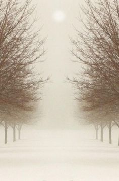 snow mist...