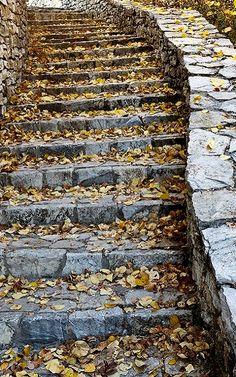 Autumn Steps.. Dimitsana , Greece | by Nasos Efstathiadis Acropolis, Ancient Greece, Stairways, Stepping Stones, City Photo, Greek, Landscape, World, Stone Steps