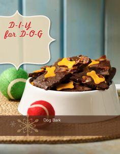 DIY Doggie Treats