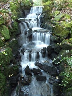 Waterfall in Clyne Gardens by Jonnyboy2005, via Flickr