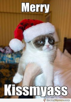 Funny+meme+of+grumpy+cat+with+a+Christmas+hat.+What+does+this+guy+has+to+say+about+this+holiday+is+Merry+kissmyass.