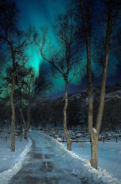【道 路 Way】         Aurora Borealis over Graveyard ~ Kabelvåg, Lofoten Islands, Norway