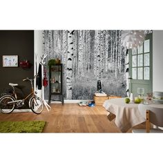 You'll love the Komar Birch Forest Wall Mural at Wayfair.ca - Great Deals on all Décor  products with Free Shipping on most stuff, even the big stuff.
