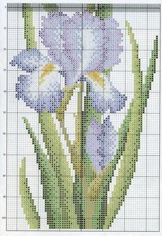 Gallery.ru / Фото #99 - цветы разное, что хочется - tastr