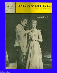 Camelot (wrong picture, but right title - book is out of print) I read the school library book so many times that I loved it so much. Last time I read it was when I was teenager. I missed that book!!!!!