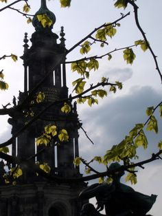Steeple and tree in Dresden, Germany