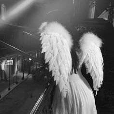 P) by CamrenAttack (Camren) with 633 reads. Angel Aesthetic, White Aesthetic, Aesthetic Photo, Aesthetic Girl, Aesthetic Pictures, Top Photos, Girl Photos, Cute Girl Photo, Girl Photo Poses